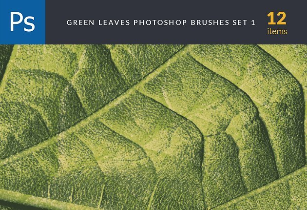 designtnt-brushes-green-leaves-1-small