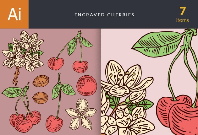 designtnt-vector-engraved-cherries-small