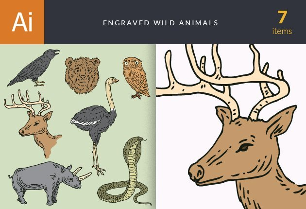 designtnt-vector-engraved-wild-animals-small