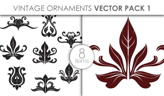 designious-vector-vintage-ornaments-pack-1-small-preview