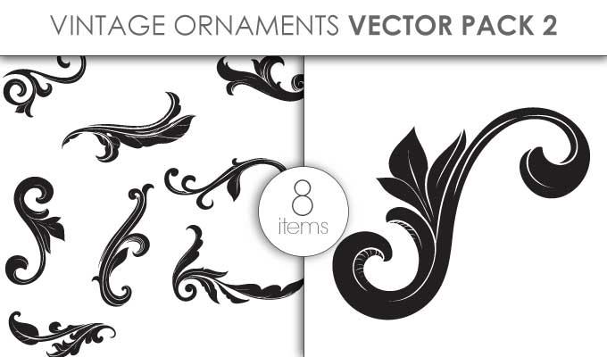 designious-vector-vintage-ornaments-pack-2-small-preview