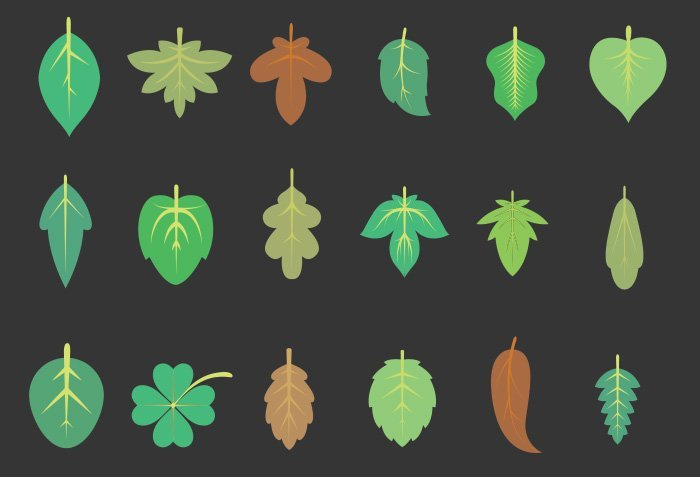 42-vectorstock-leaves-2