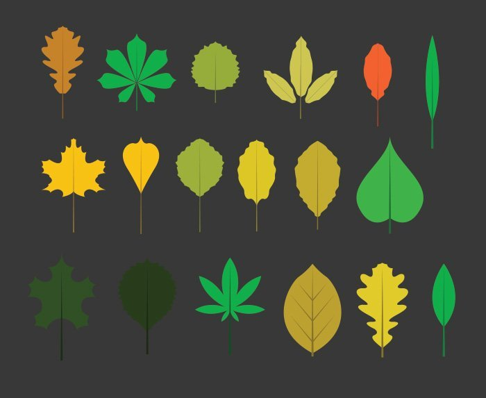 43-vectorstock-leaves