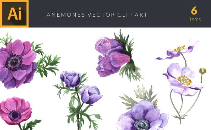 design-tnt-anemones-set-1-small-preview