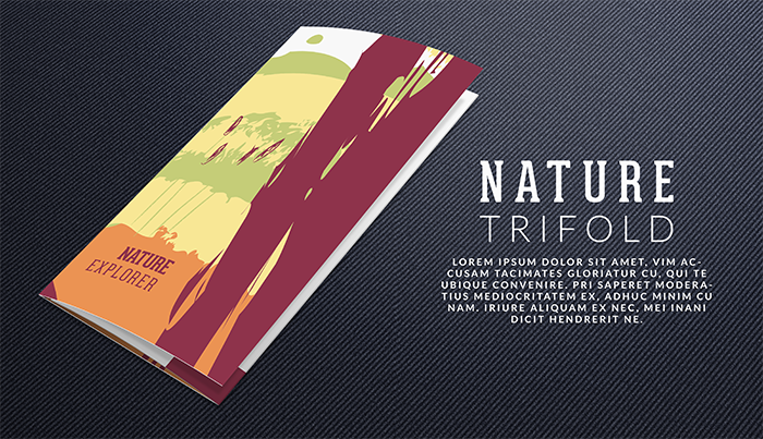 trifold-folded-forest