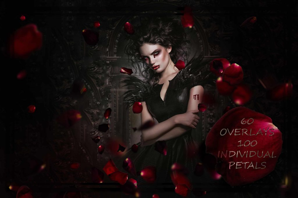 1___blood_petals_exc_NYcOr-1024x681